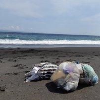 Déchets ramassés en quelques minutes sur une très jolie plage pas du tout touristique